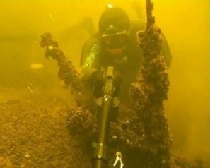 Подводное ружье как выбрать ружье